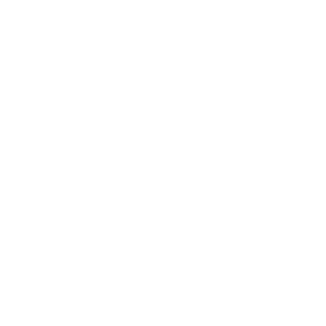 logo visit tempio