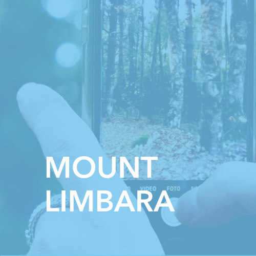 Tempio Pausania Mount Limbara