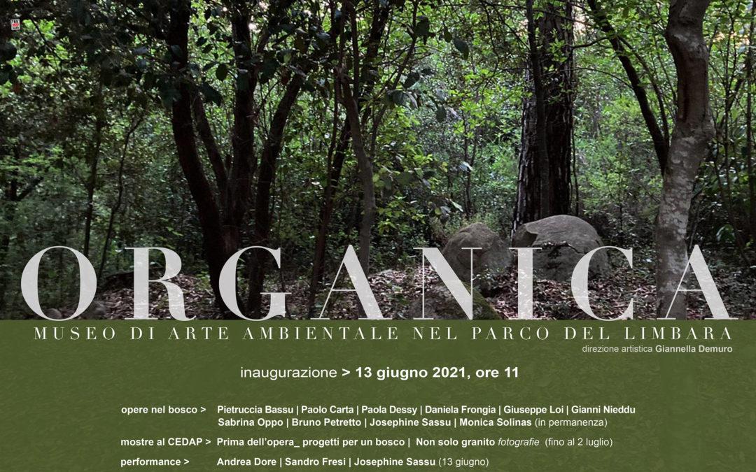 Organica: arte contemporanea ai piedi del Limbara