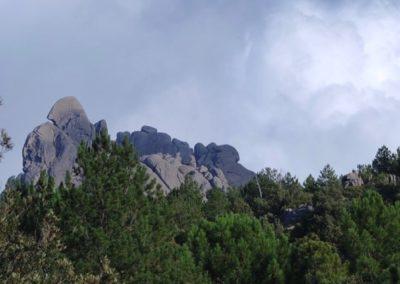 granito-monte-limbara